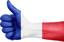 1Anlage-France.png