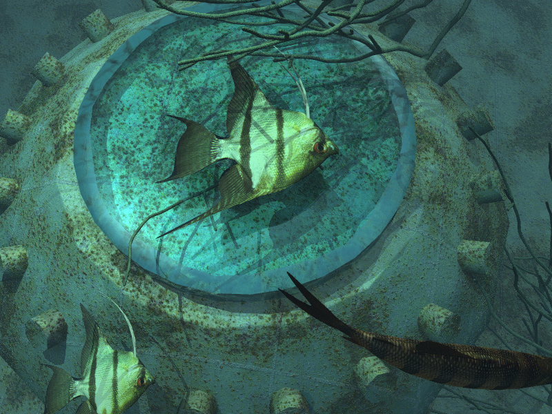 Porthole with Fish by celtxian