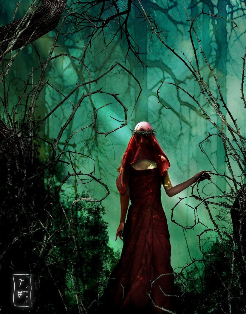 Forest Whispers by designfera