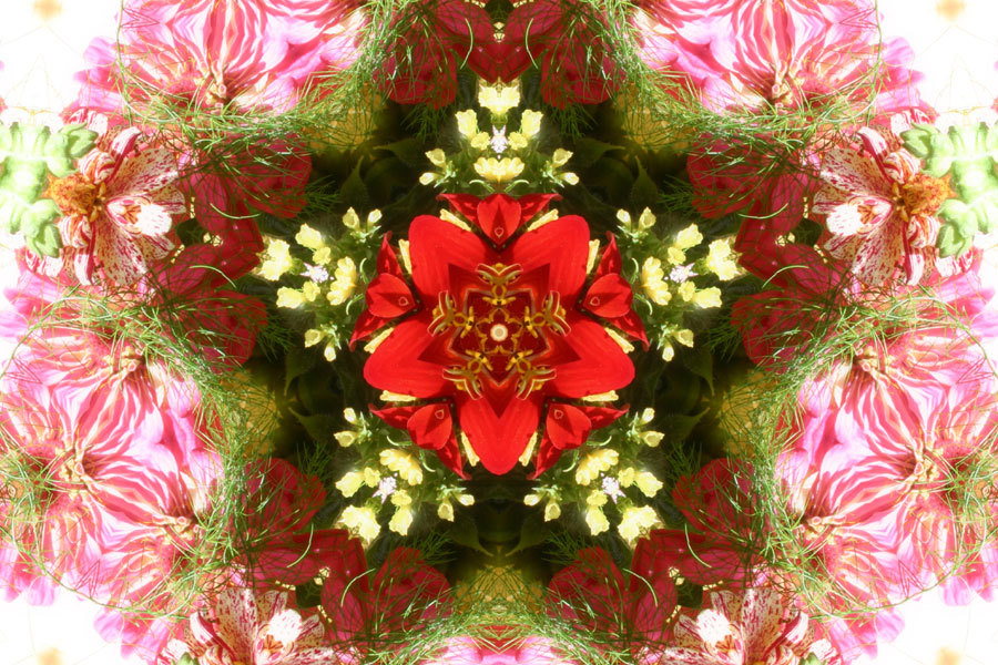 Flowers Kelidoscope