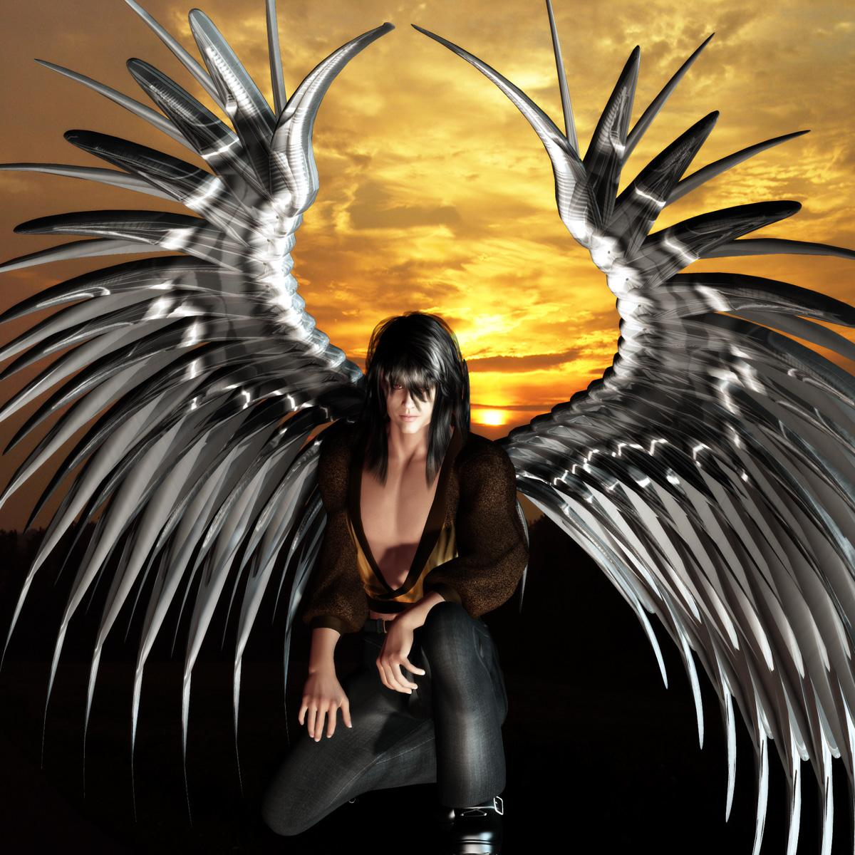 Winged Male Wednesday #106