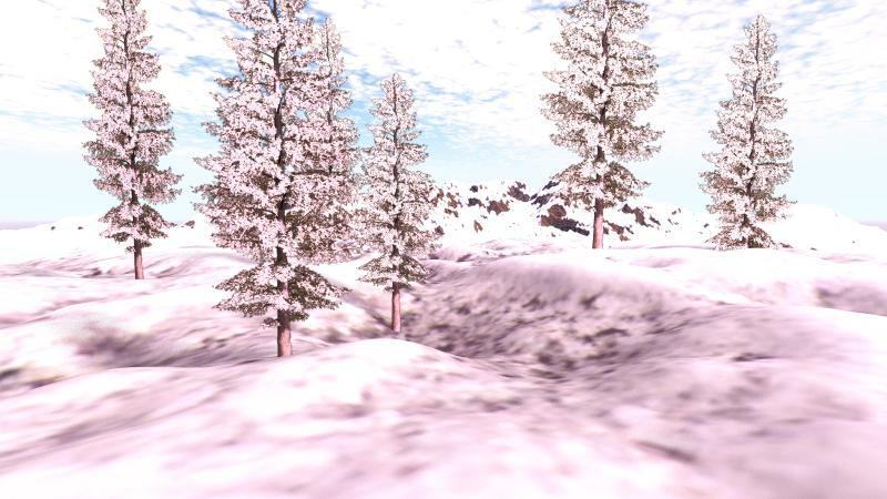 Bryce Trees in Snow 001