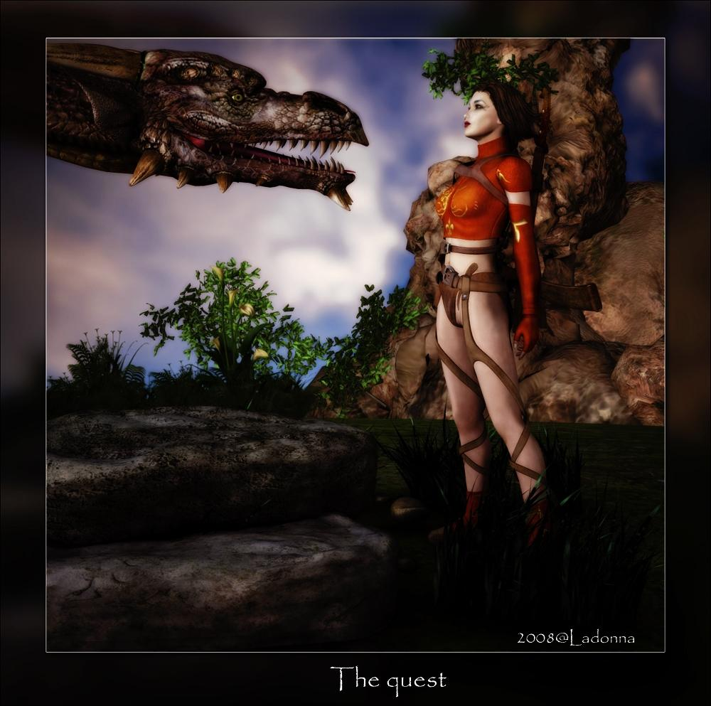The quest by Ladonna