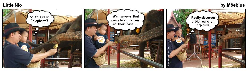 Little Nio and the Elephant