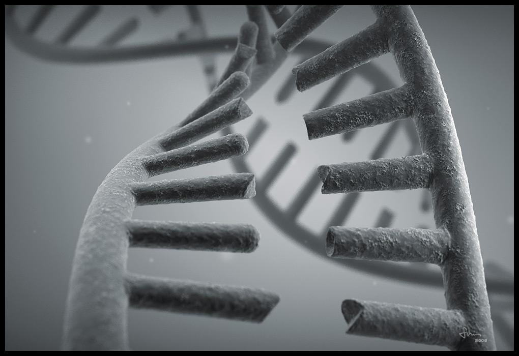 DNA -WIP