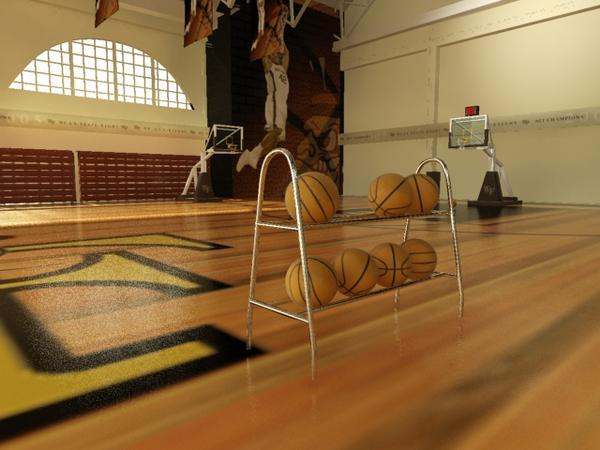Basketball Gym with Balls