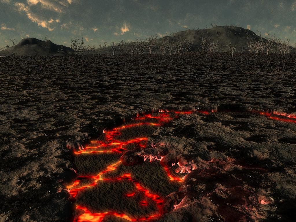 Hawaiian Lava Field