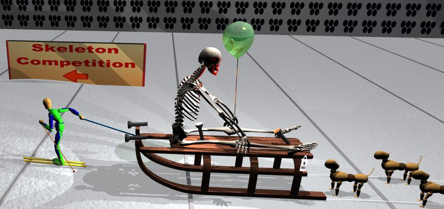 I Hate Winter Sports series: Skeleton