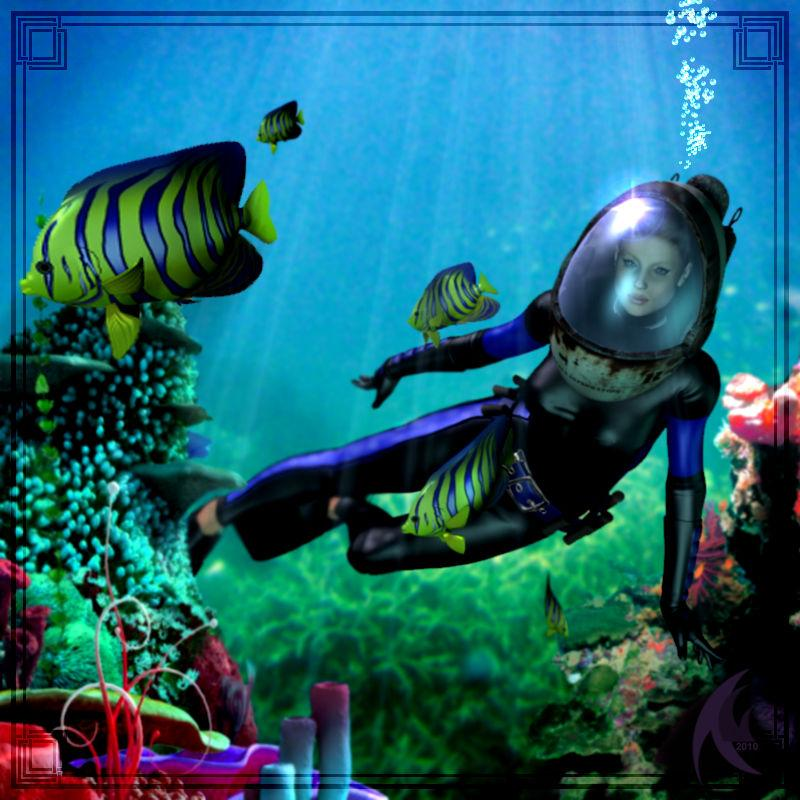 Swimming the reef