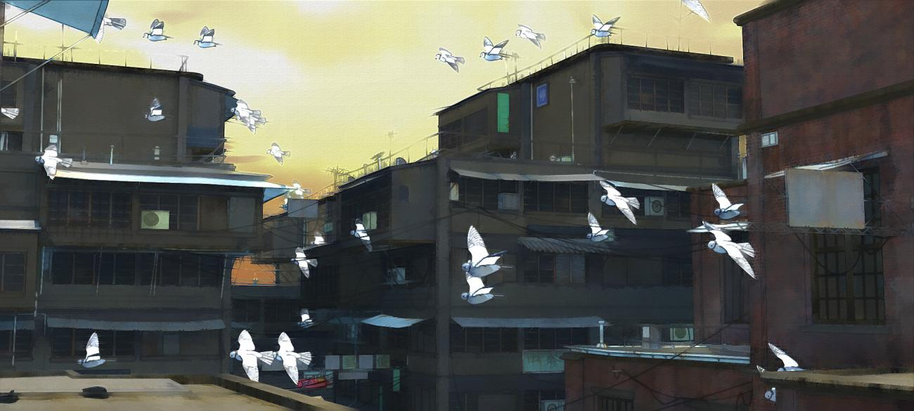 Flying pigeons in the street