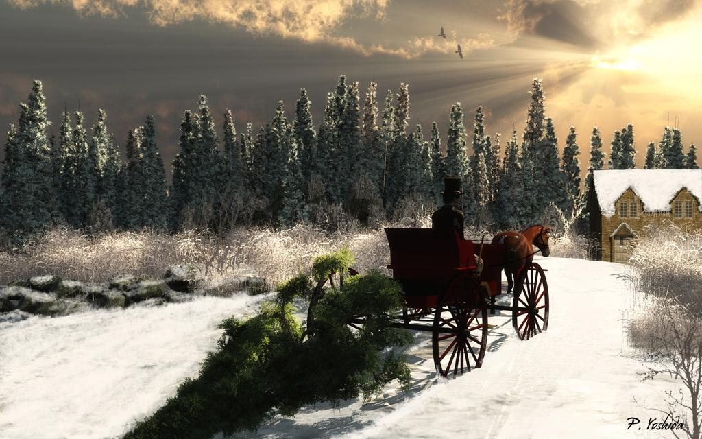 Bringing Home Christmas