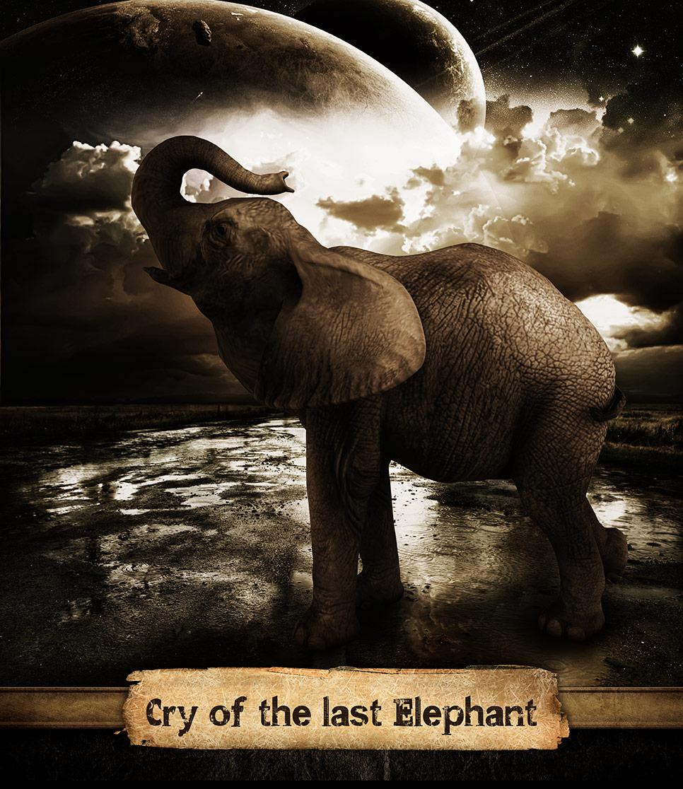 Cry of the last elephant
