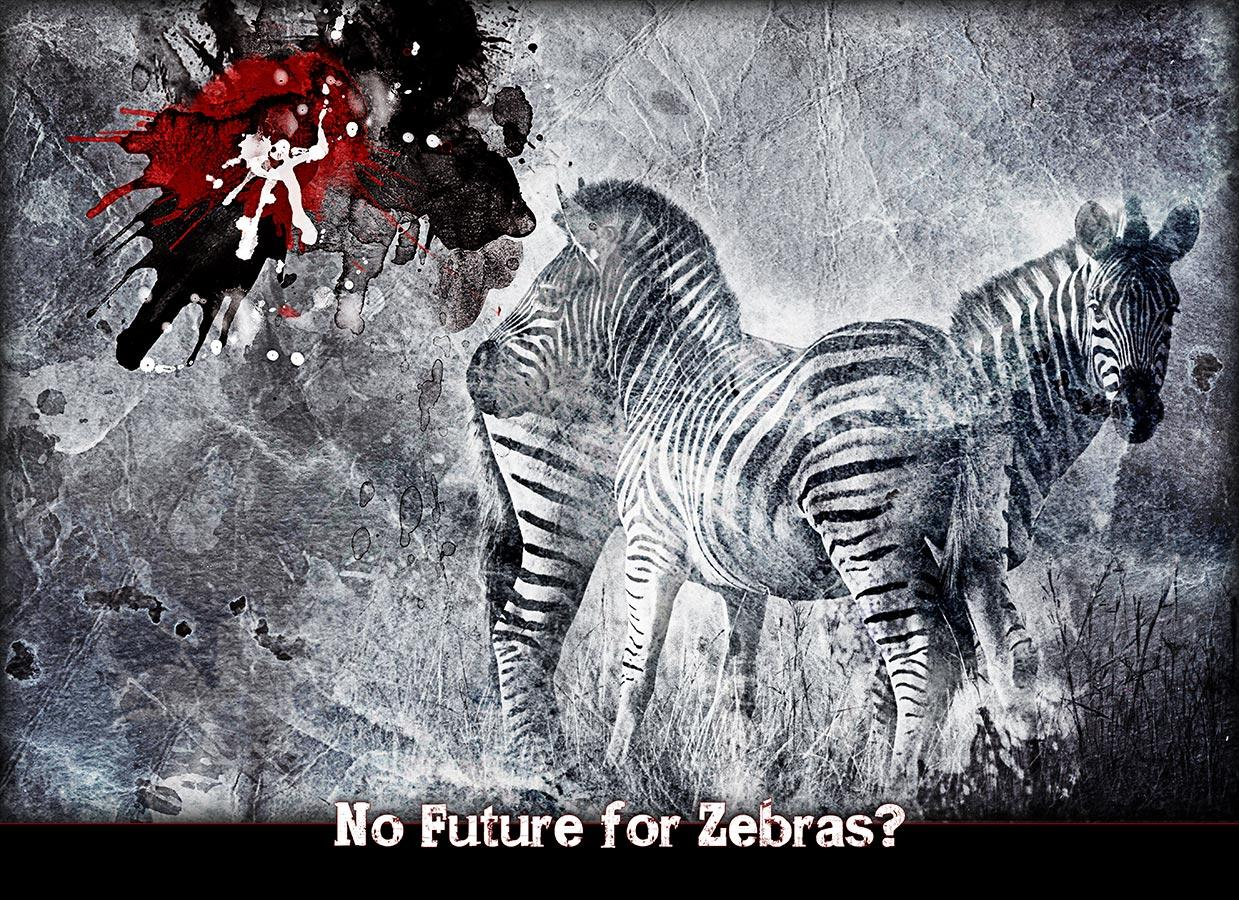 No Future for Zebras?