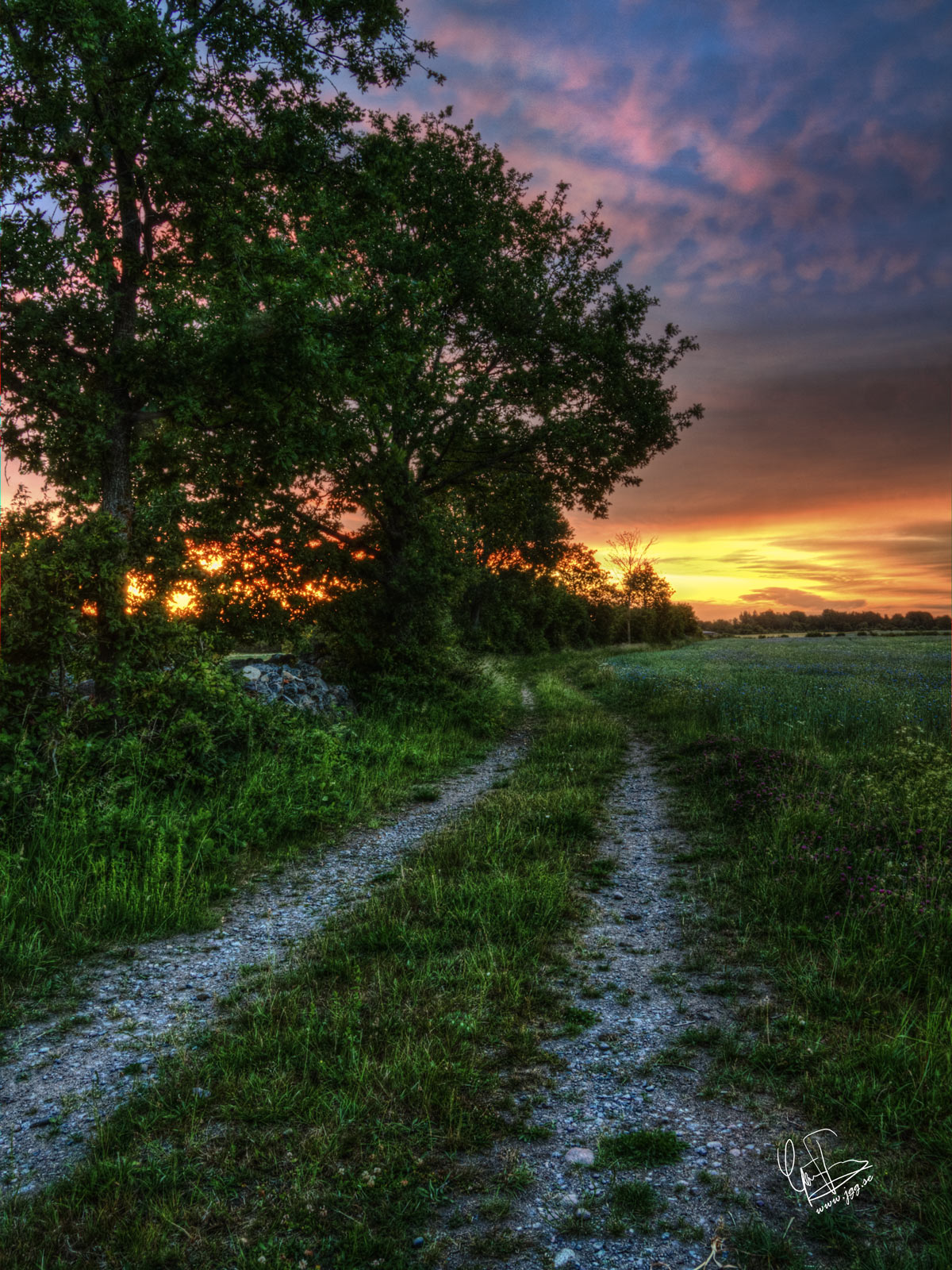 Road to a new day