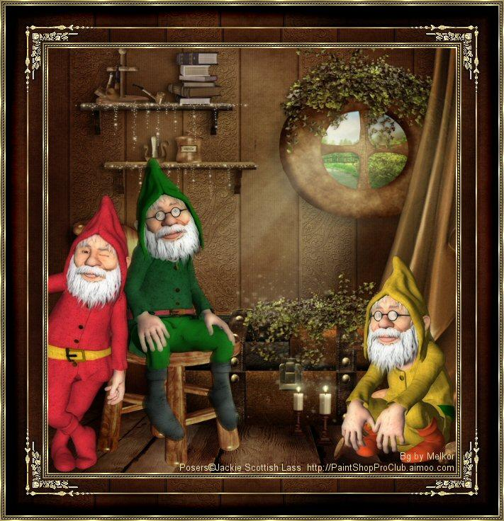 Gnomes At Home