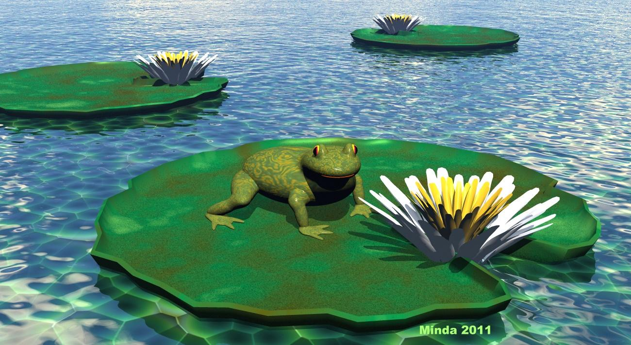 *My Cutey Little Froggy On Lily Pad * :):)