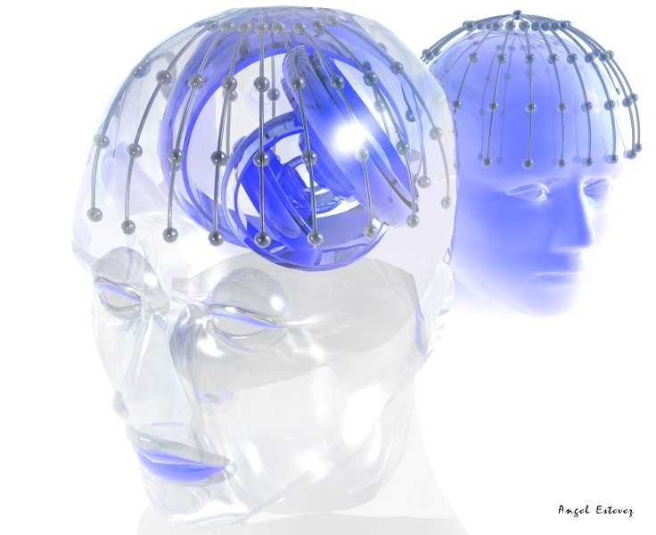 heads in glass