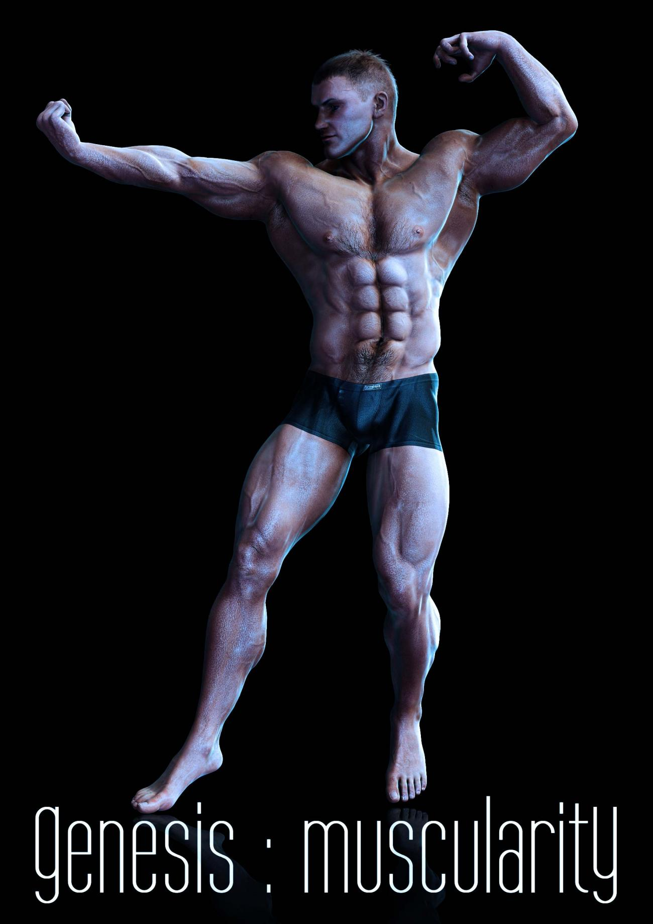 Muscularity I