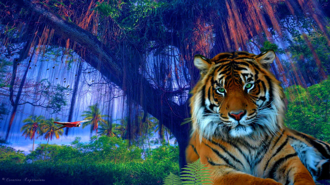 Jungle Tiger By Gsdesktops 2d Animals
