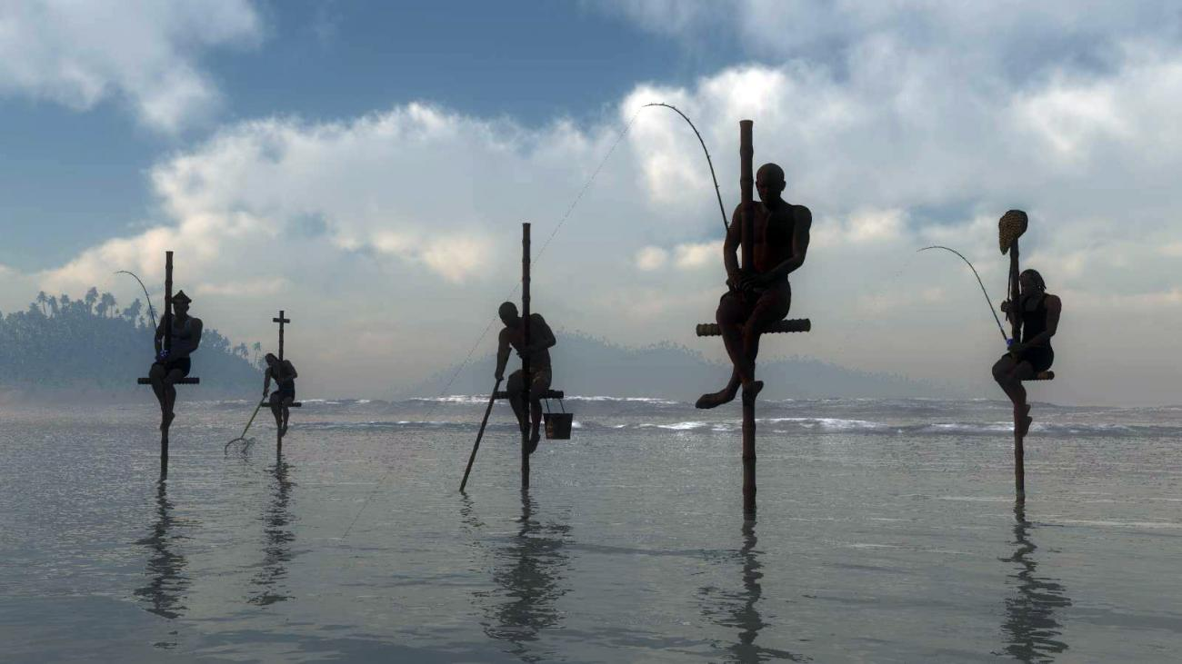 Pole Fishermen of Sri Lanka