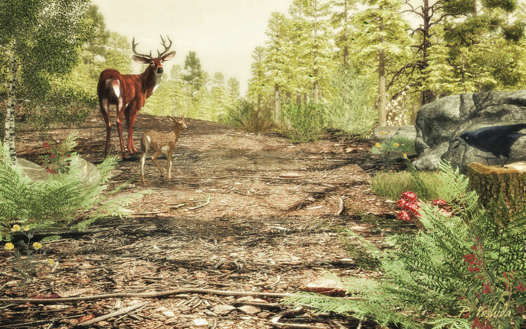 Deer and Rook in Forest