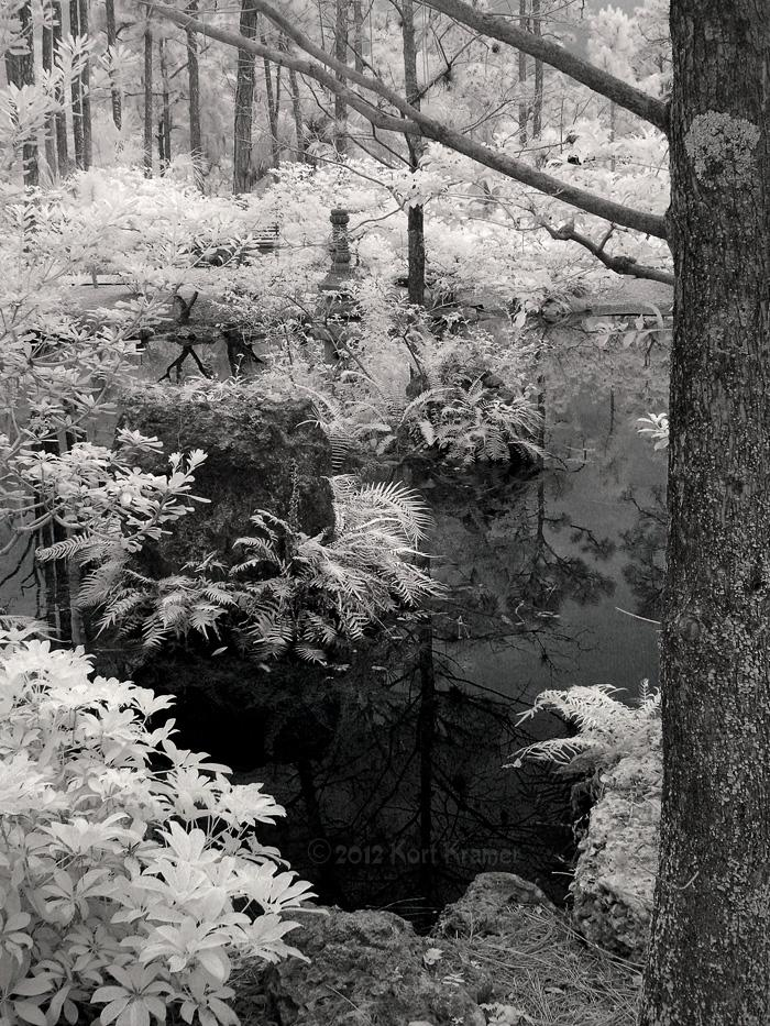 Morikami Pond in B&W