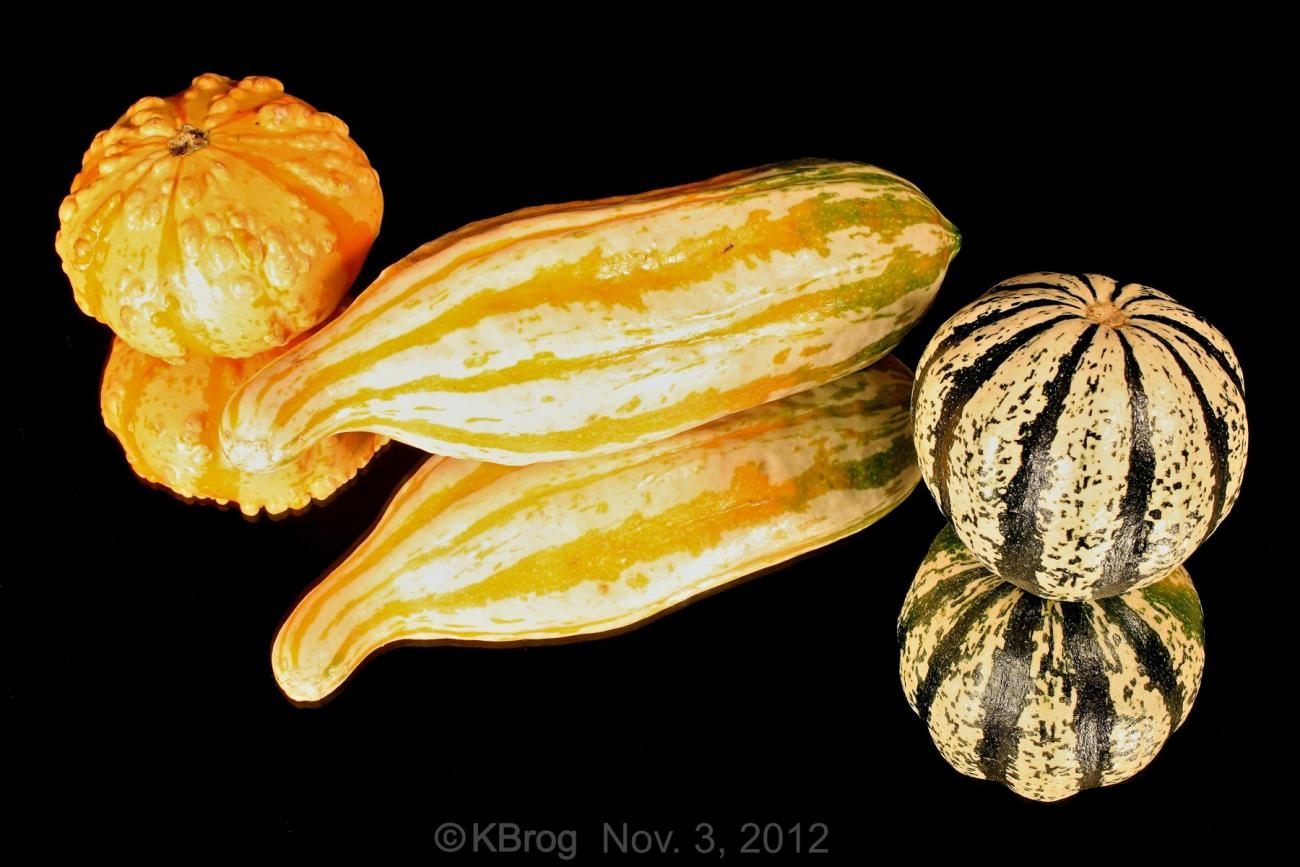The season for Gourds