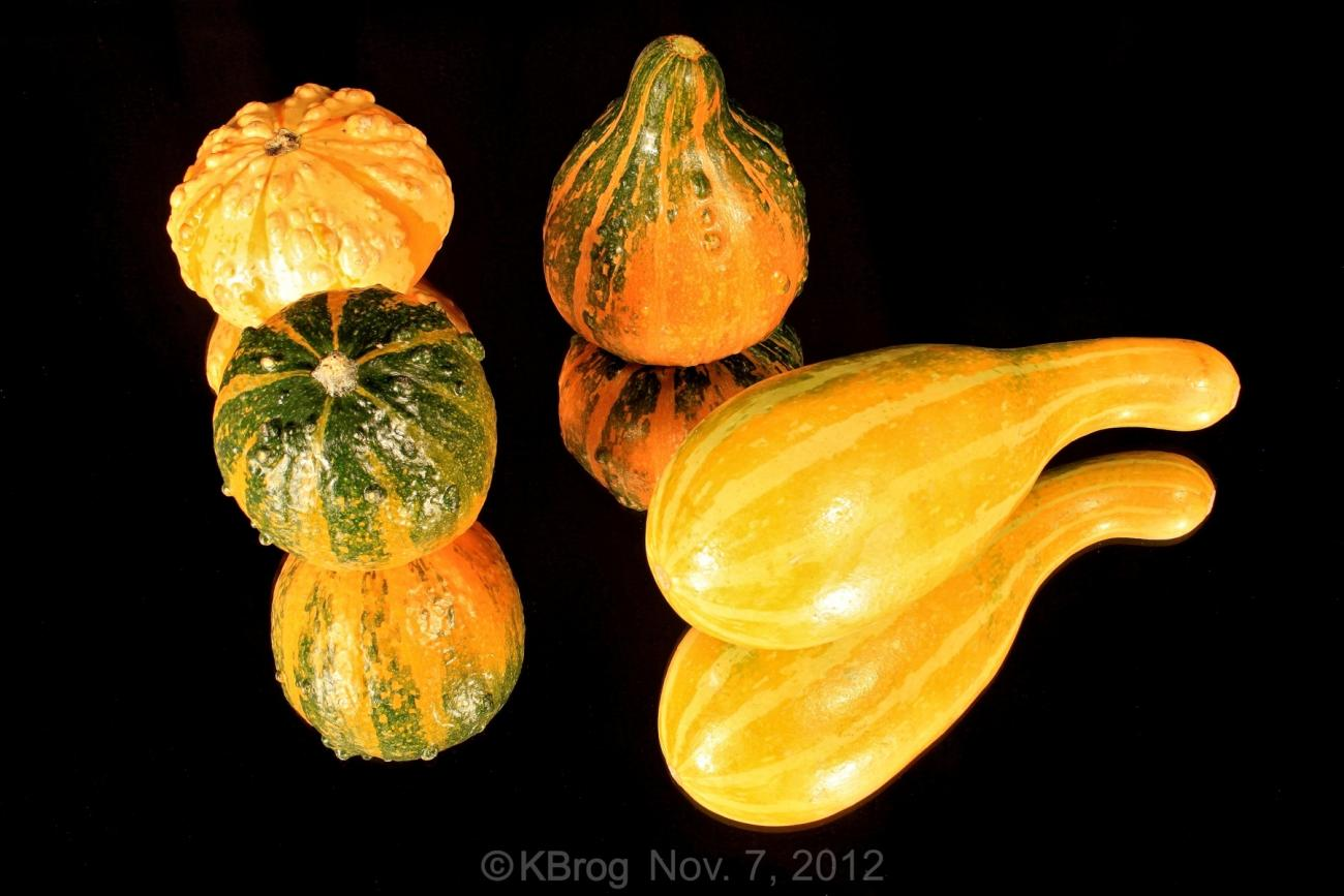 More Gourds