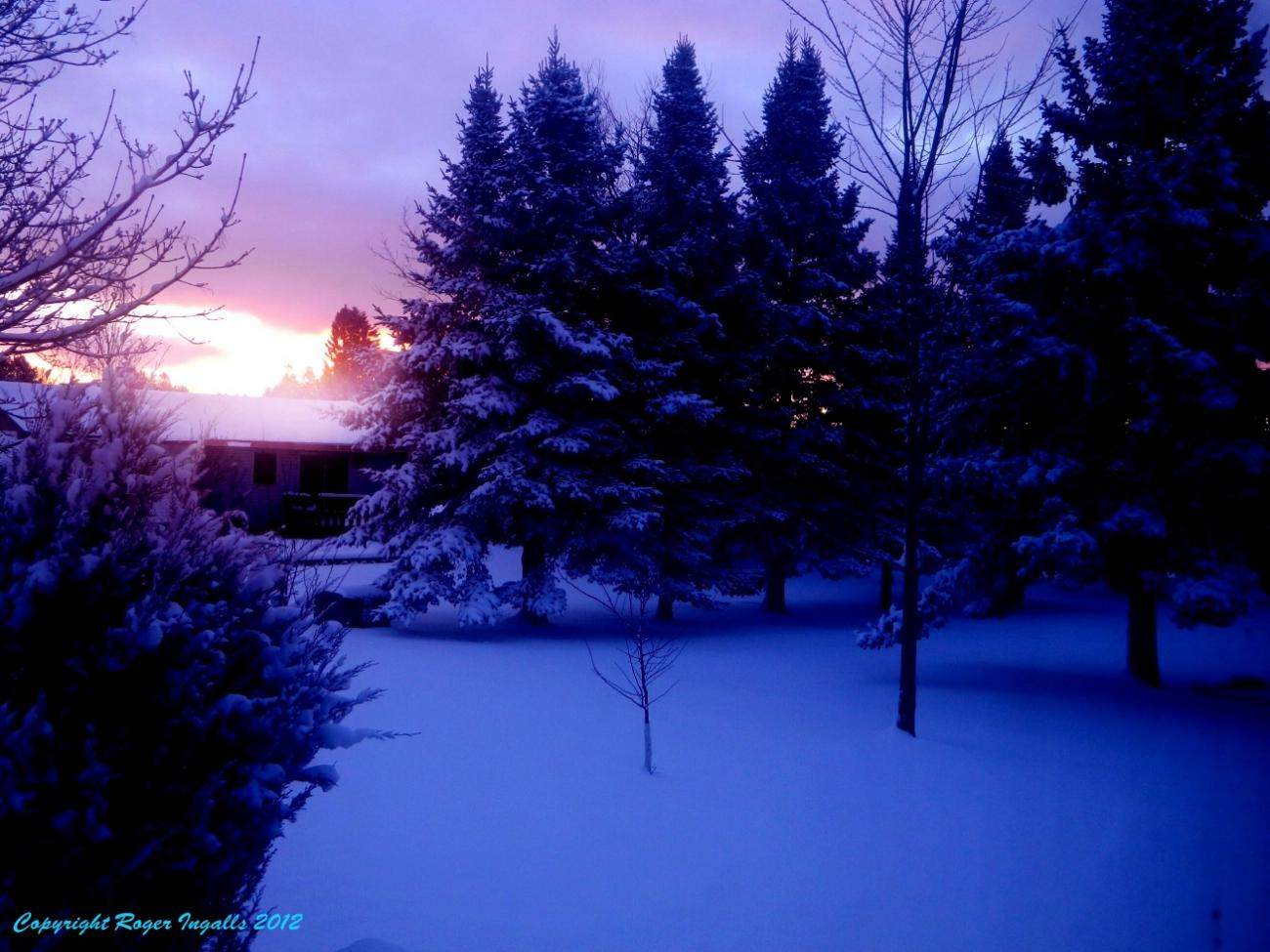 First Winter Snow At Sunrise