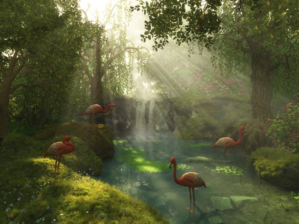 Flamingoes in Glory