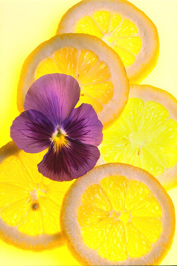 Lemon with Pansy
