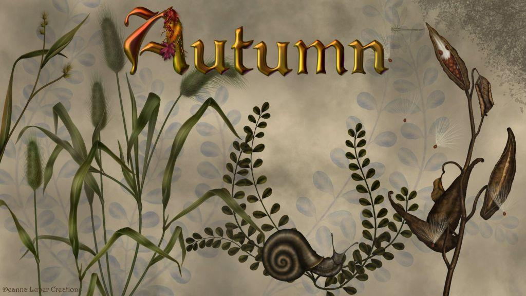 Autumn by DL