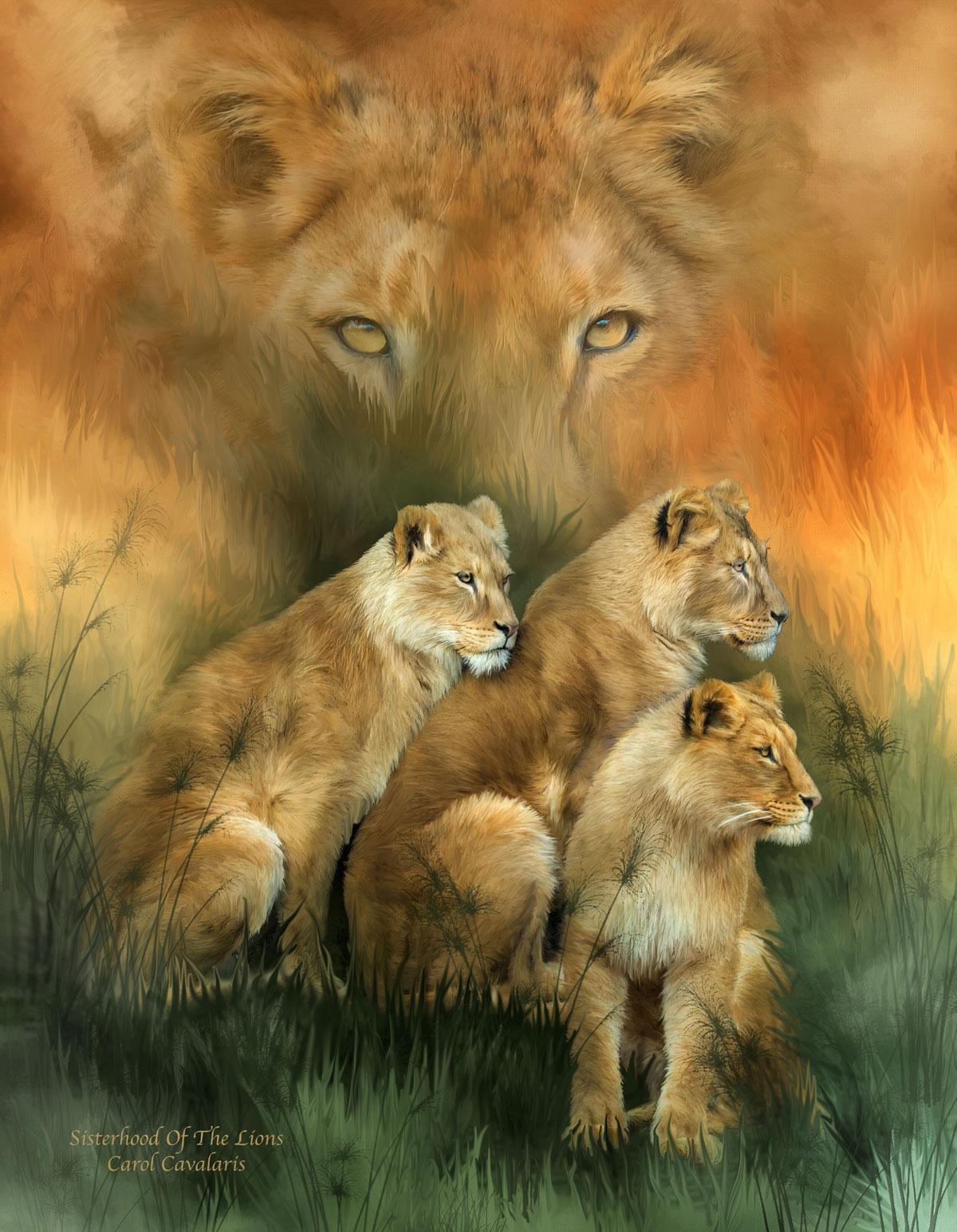 Sisterhood Of The Lions