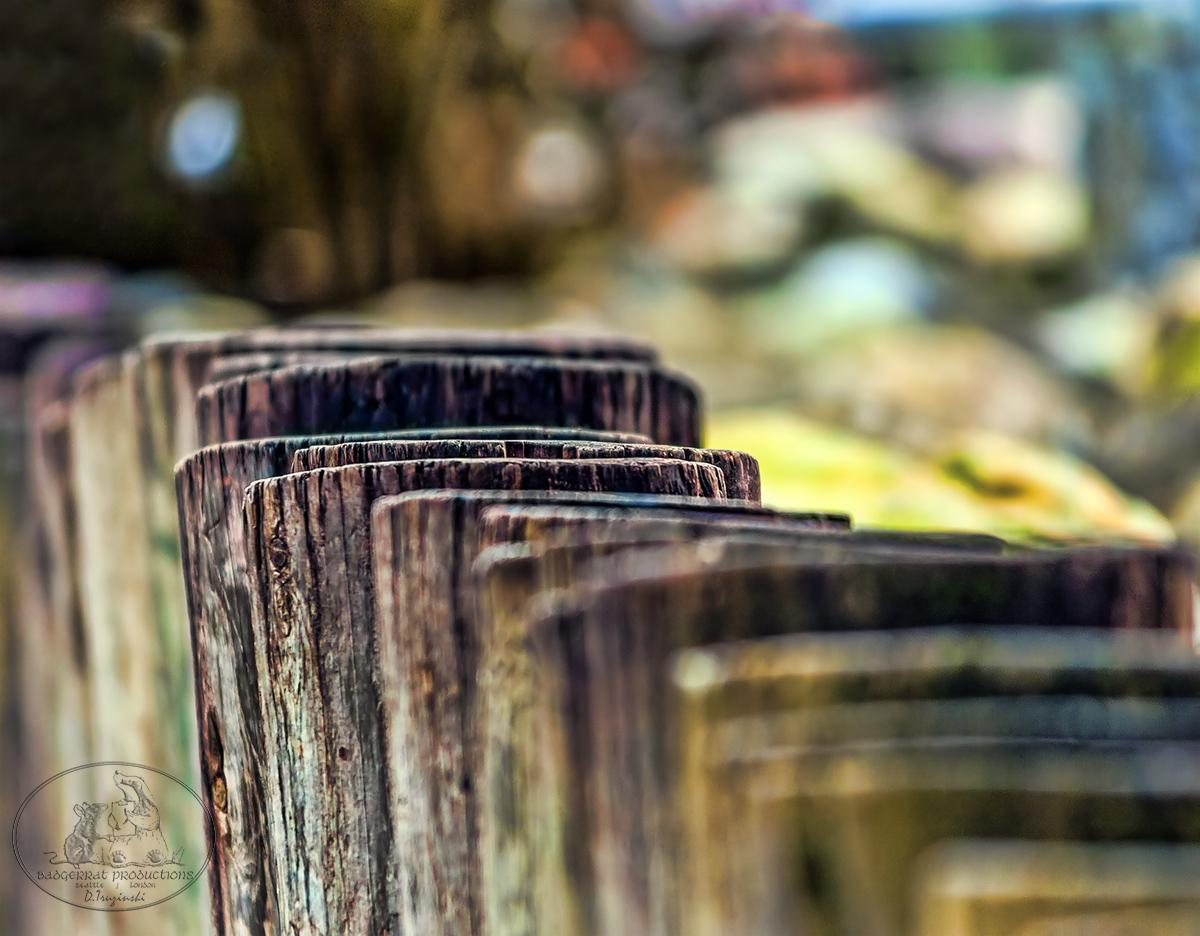 Short pilings:  the sitting wall