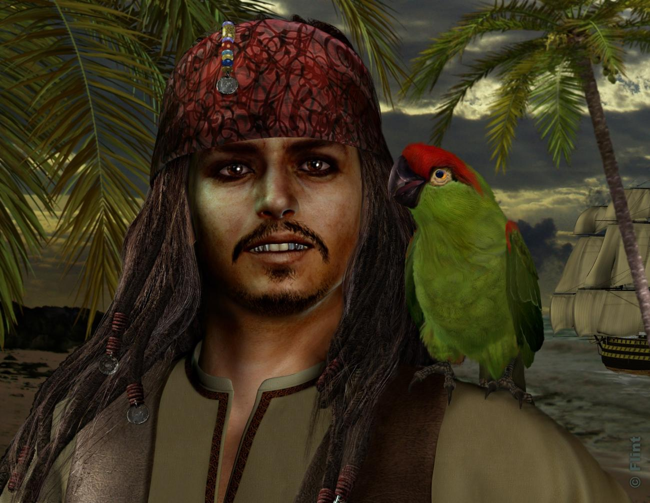 Of Pirates And Parrots