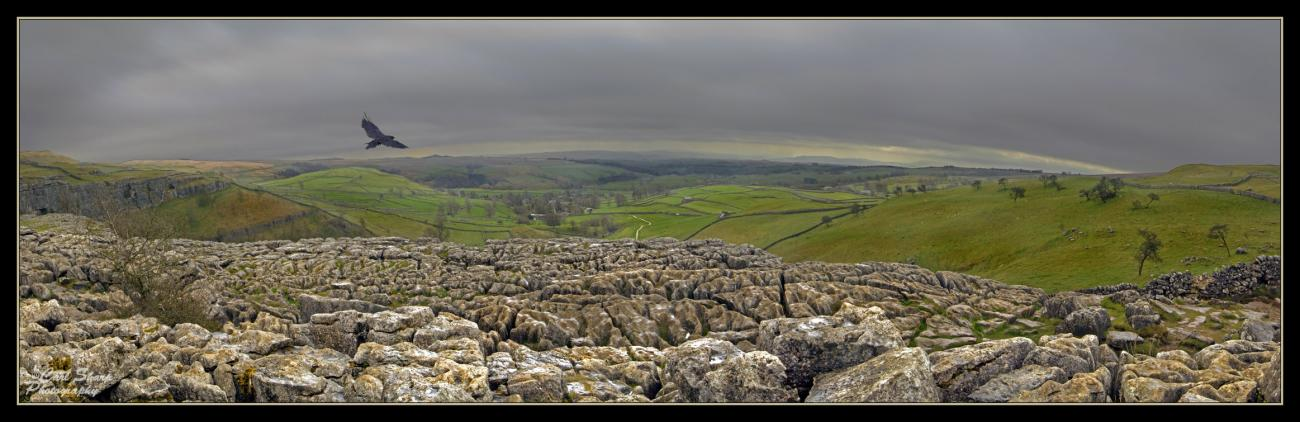 The Limestone Pavement