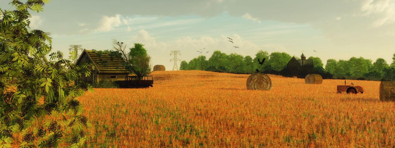 Harvest time by Dotthy