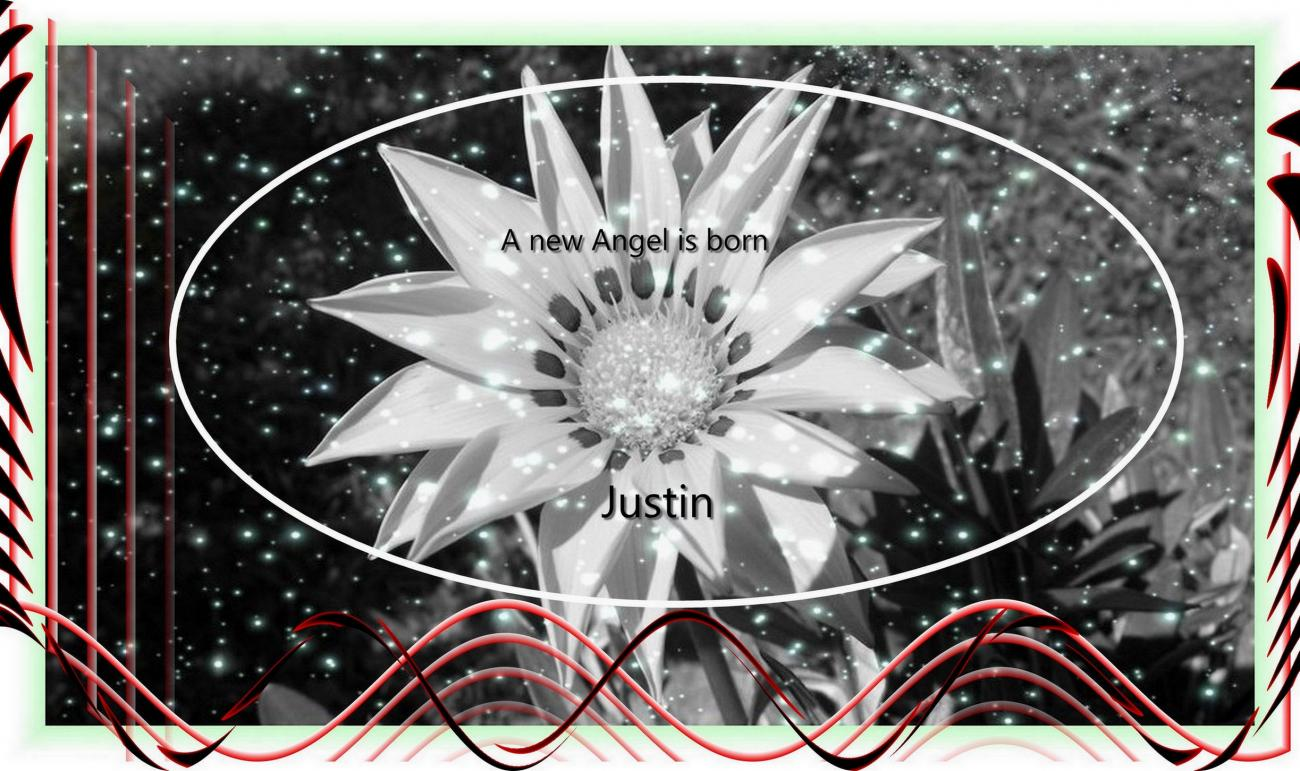 ( A new Angel is Born (Justin )