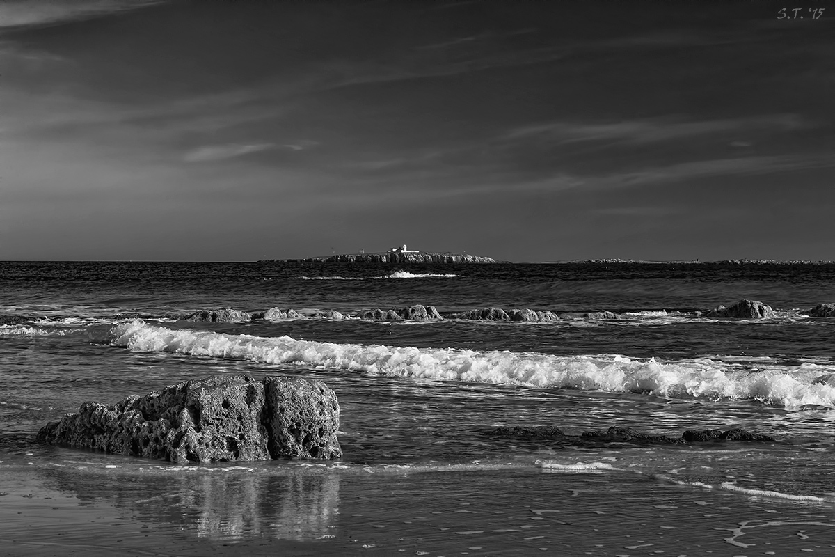 The Farne Islands, from Seahouses by tommorules