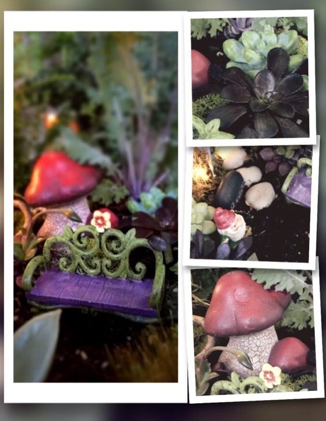 My Backyard Fairy Garden
