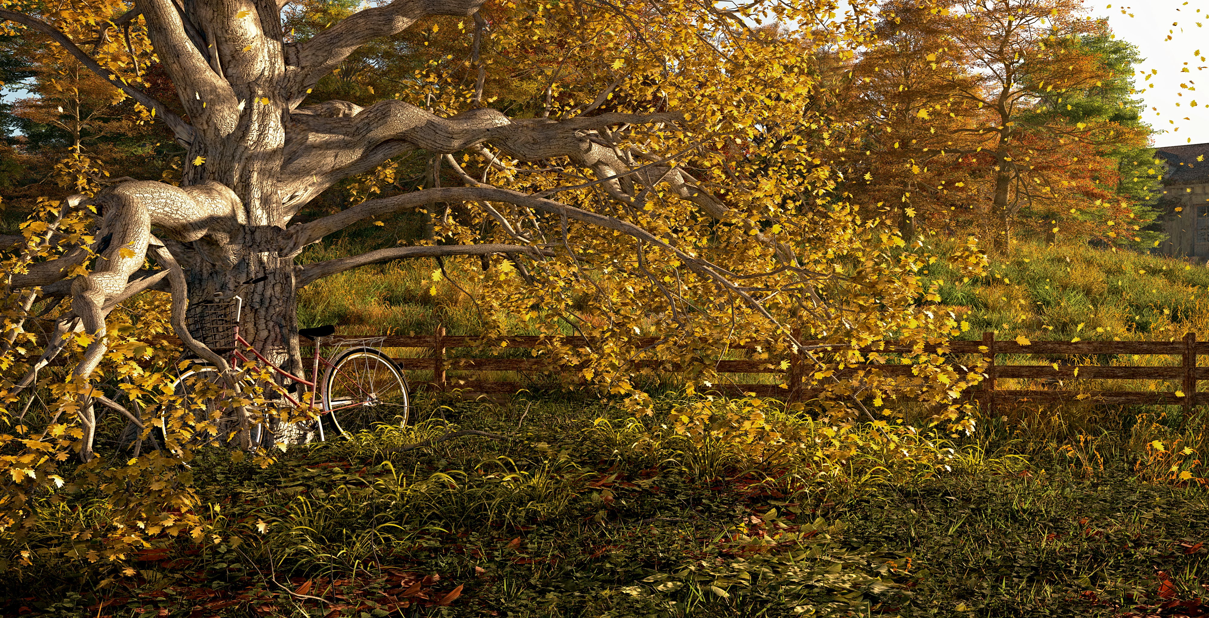 Bicycle and autumn oak