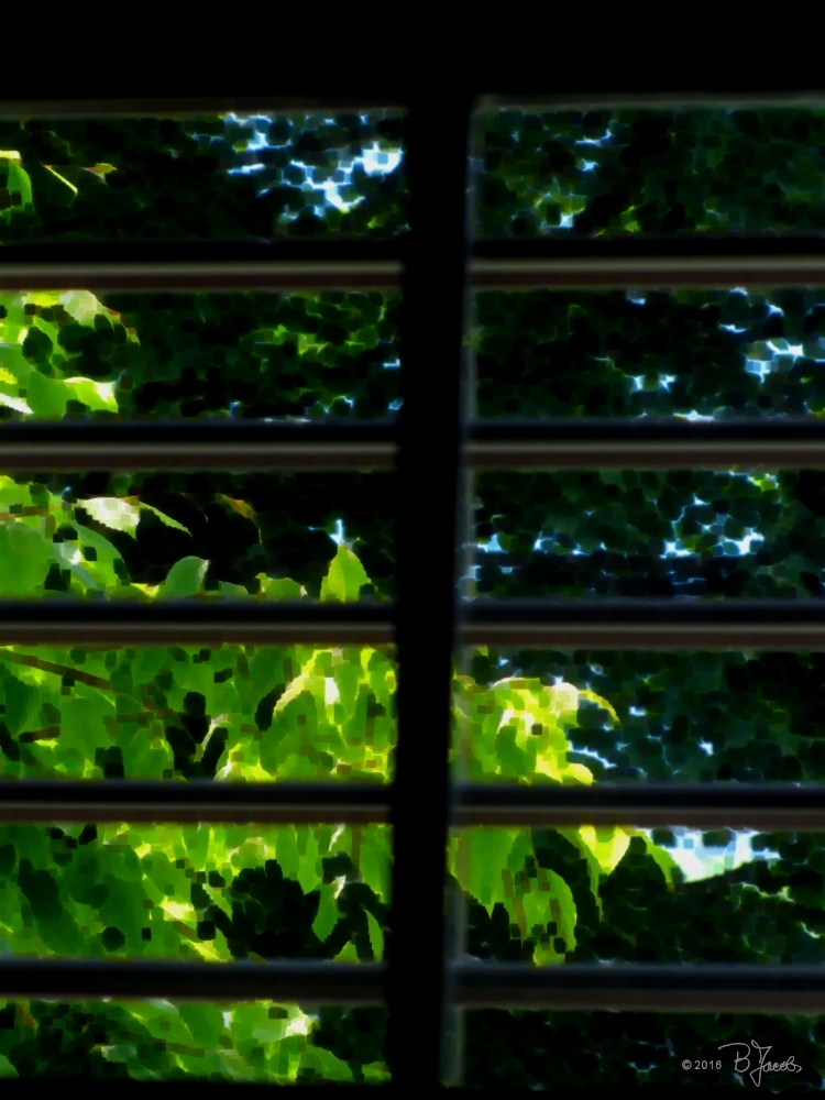 Through the light shades (June Unusual Subjects En