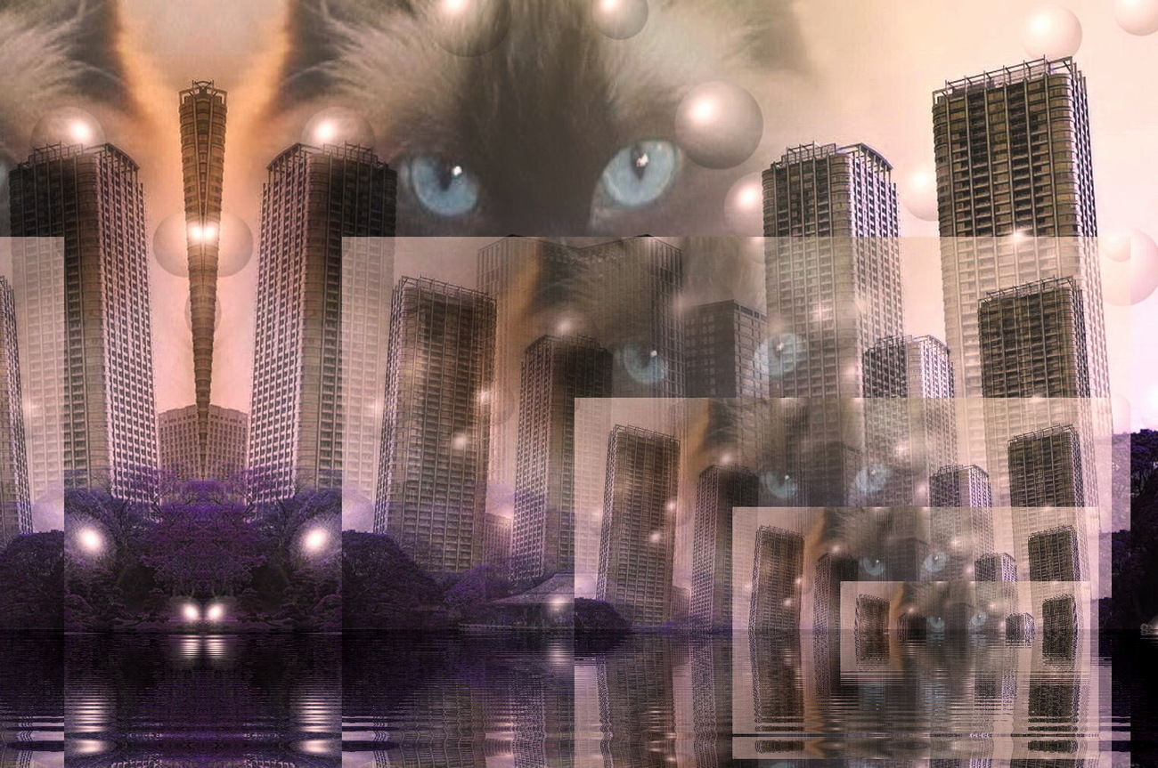 CAT IN THE CITY by VEDES