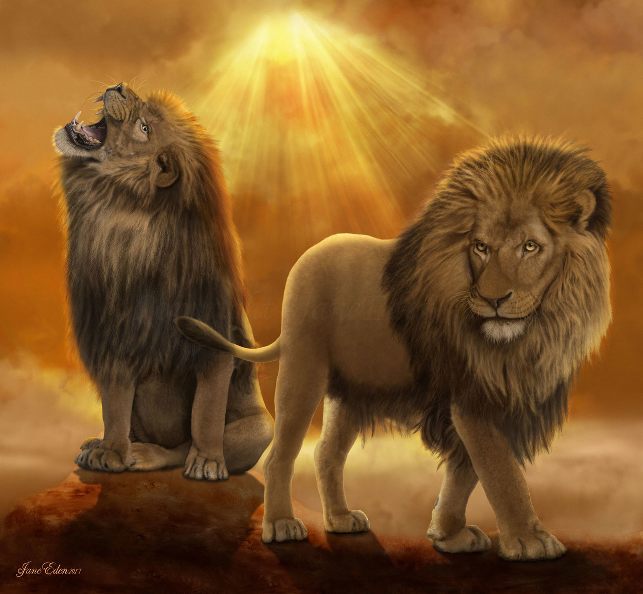Lions at the top of their Kingdom