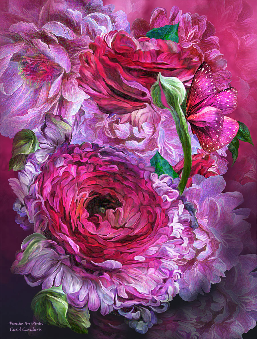 Peonies In Pinks