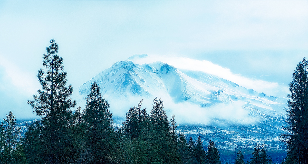 Shasta In The Clouds