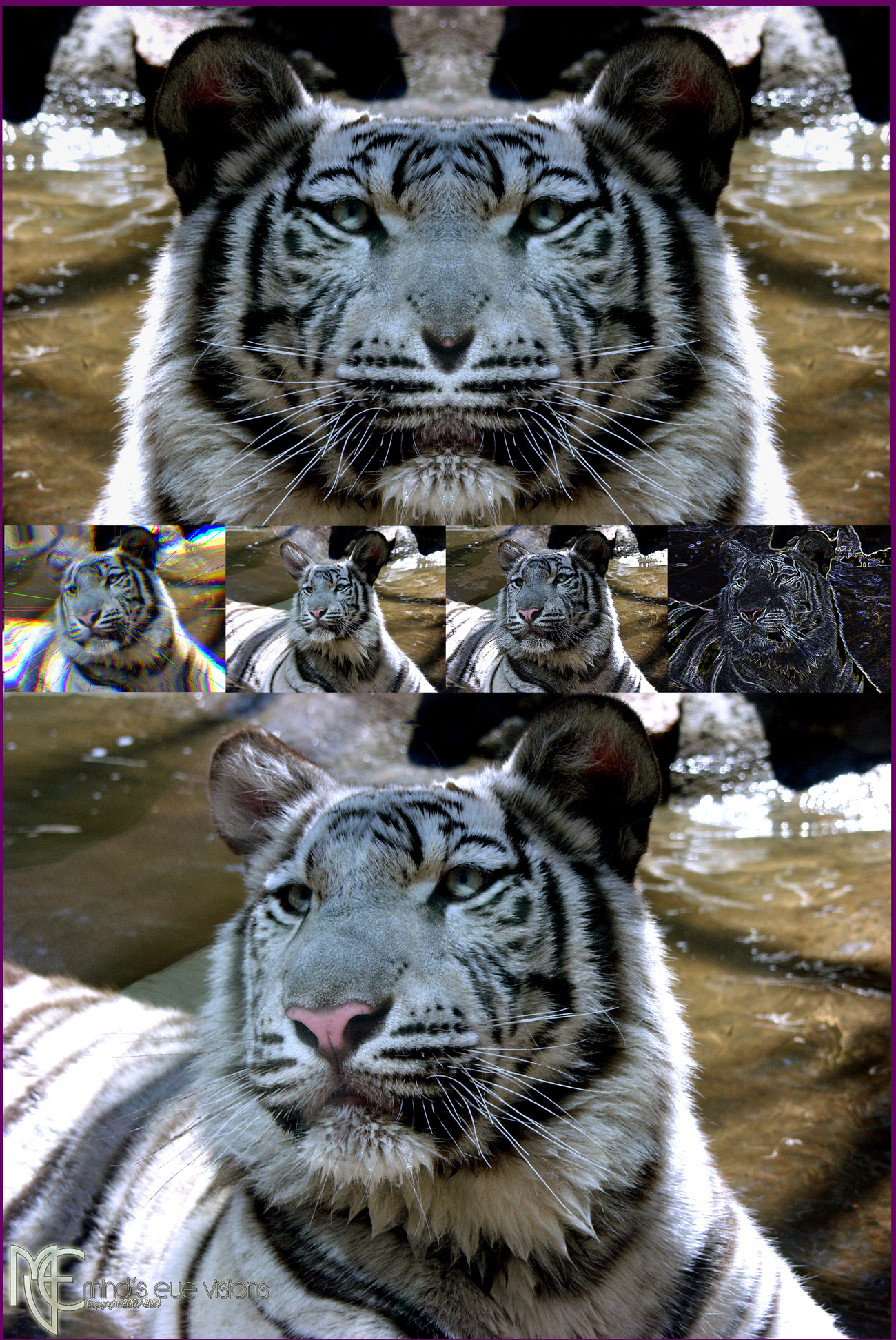 White Bengal w Variations for (anahata.c)