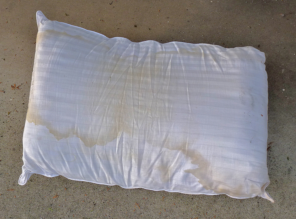 Abandoned pillow