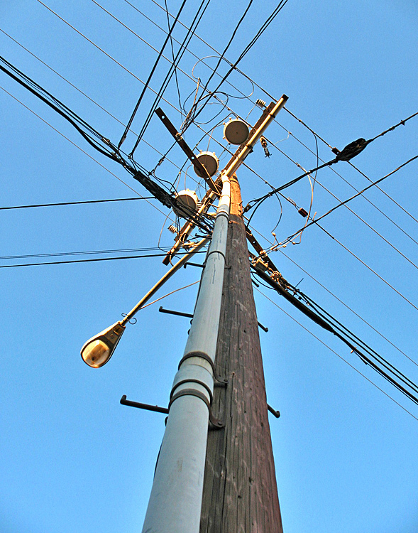 Telephone pole #3
