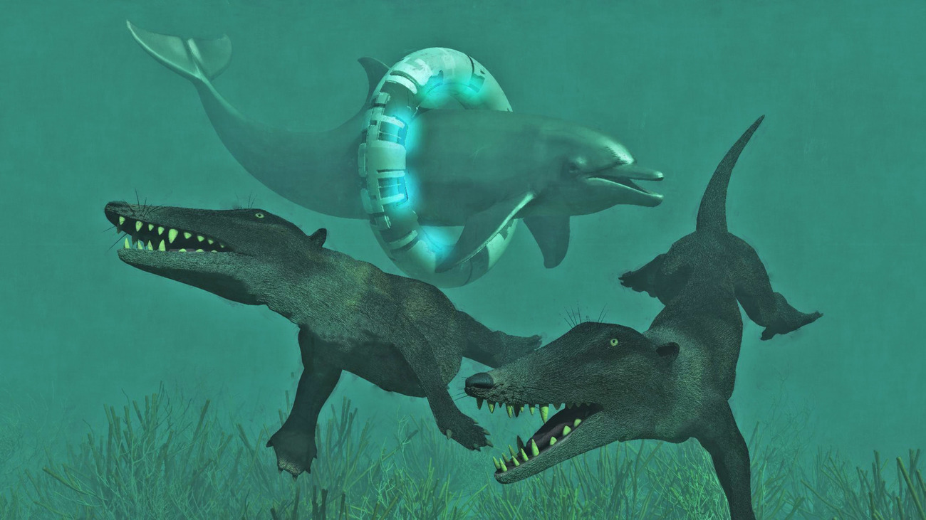 Time-Traveling Dolphin Visits His Eocene Ancestors
